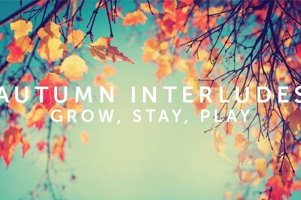 Autumn Interlude Incentive
