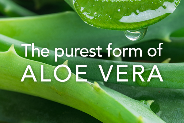 The purest form of Aloe Vera